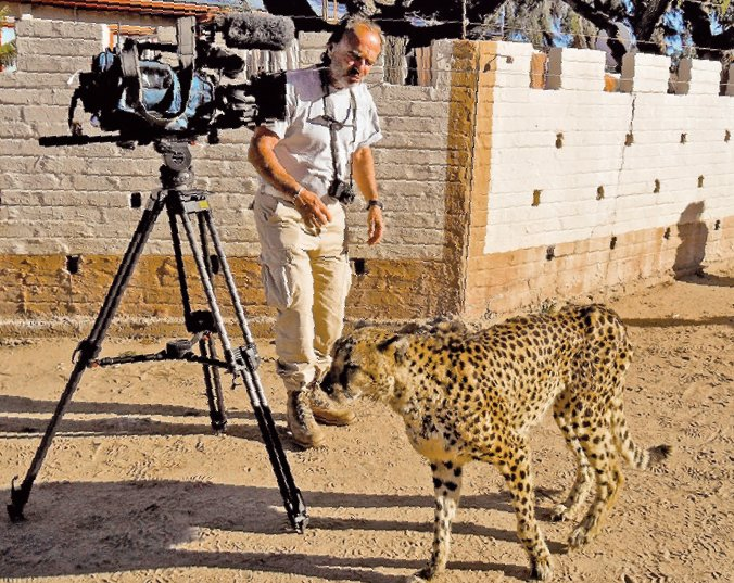 Gael Grivet, Safari